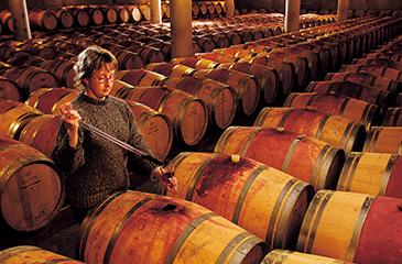 điều hòa daikin trong sản xuấ rượu vang